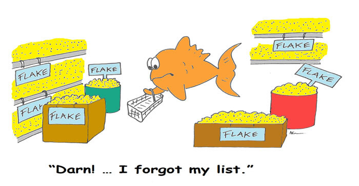 goldfish food reviews